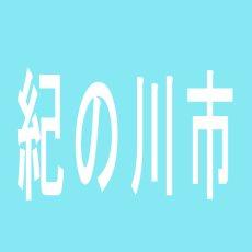 【紀の川市】パチーズPLUS貴志川のアルバイト口コミ一覧